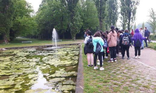 Gialli-verdi s.secondaria di primo grado Montessori – Cinisello Balsamo – 29 aprile 2021