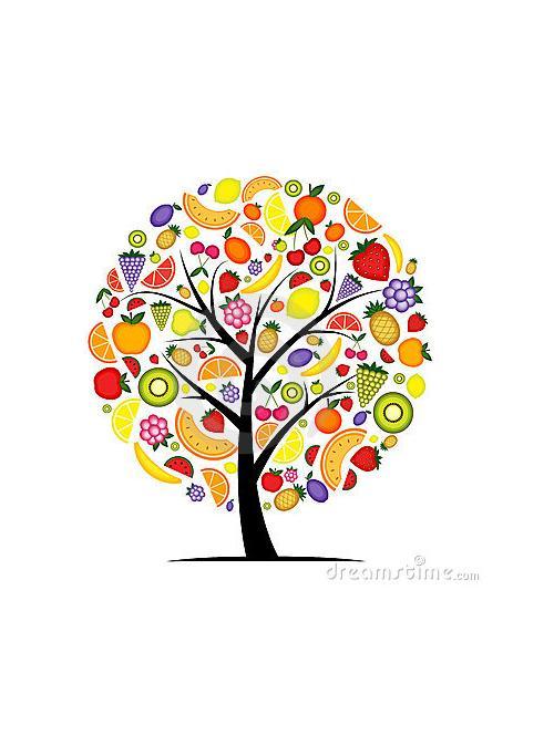 albero dei frutti