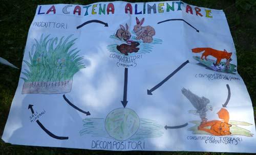 3d marzabotto sesto san giovanni 20 maggio 2010 for Ecosistema dello stagno